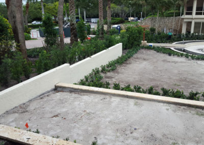 before-landscape-project